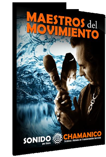 Maestros del Movimiento